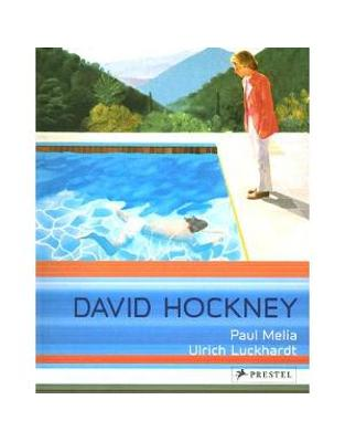 P-Art Flexo  David Hockney  Paintings