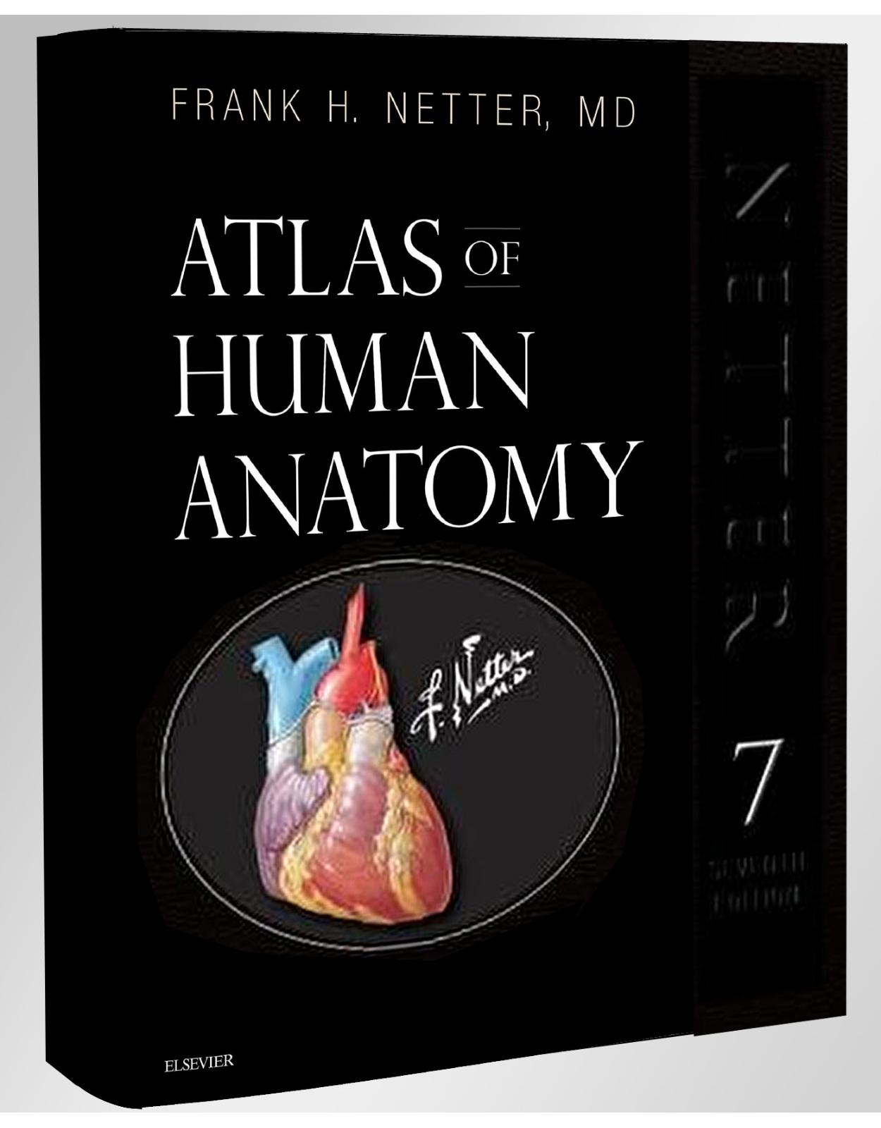 Atlas of Human Anatomy, Professional Edition, 7th Edition