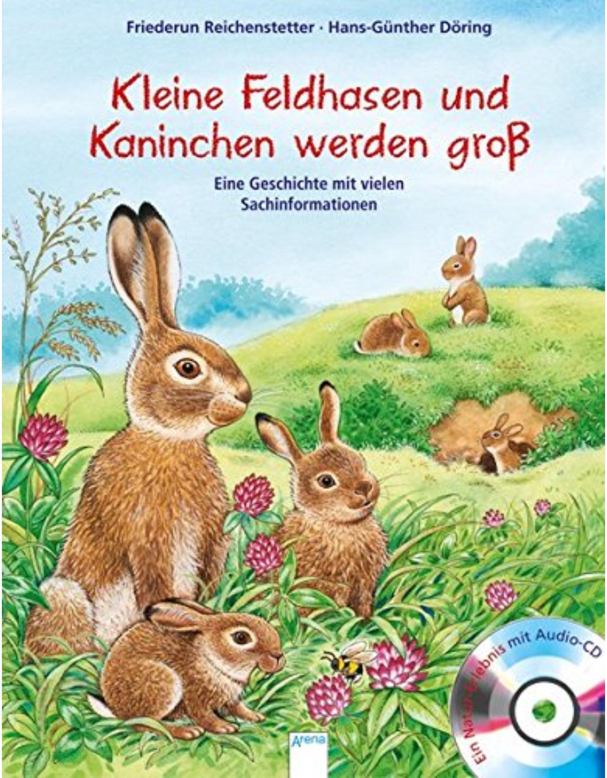 Wie kleine Feldhasen und Kaninchen groß werden: Eine Geschichte mit vielen Sachinformationen