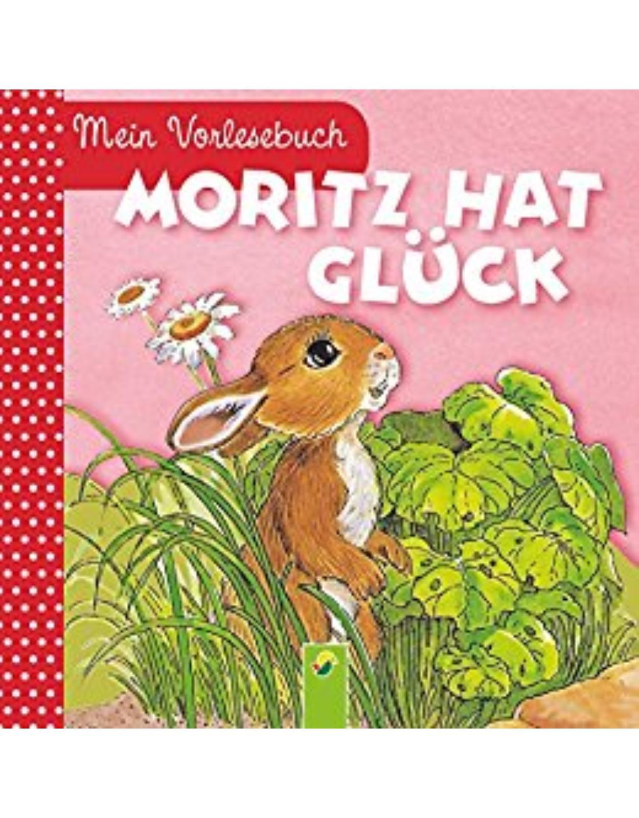 Moritz hat Glück: Mein Vorlesebuch. Durchgehende Geschichte für Kinder ab 2 Jahren