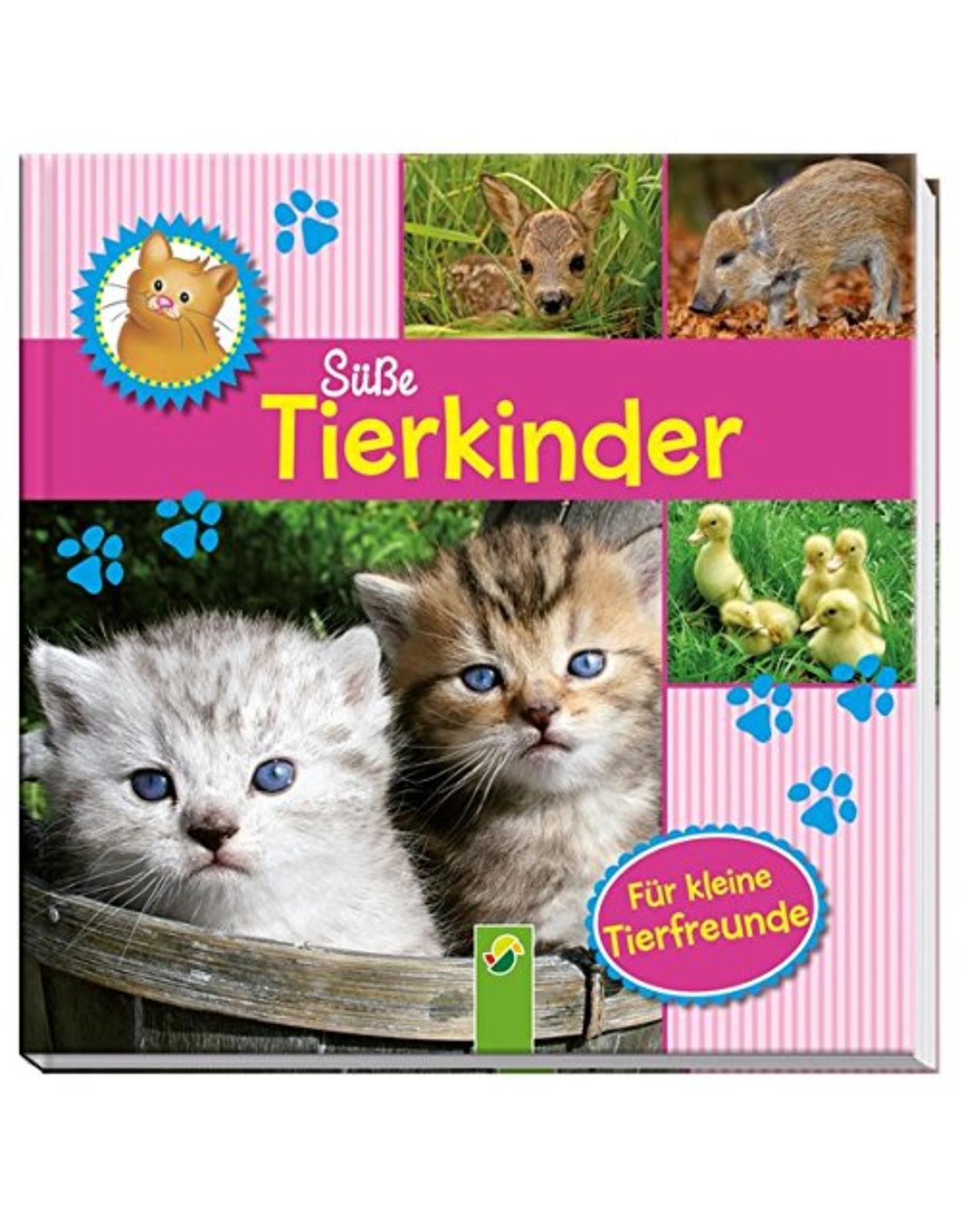 Süße Tierkinder: Fotobilderbuch für kleine Tierfreunde