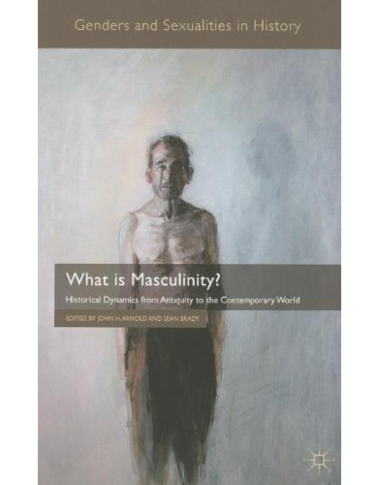 What is Masculinity?: Historical Dynamics from Antiquity to the Contemporary World (Genders and Sexualities in History)