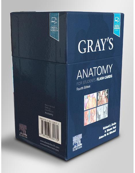 Gray's Anatomy for Students Flash Cards Cards