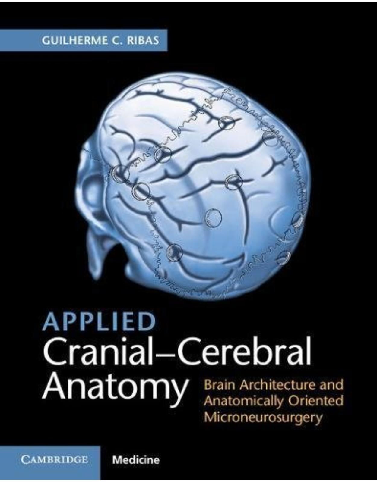 Applied Cranial-Cerebral Anatomy: Brain Architecture and Anatomically Oriented Microneurosurgery