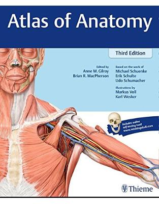 Libraria online eBookshop - Atlas of Anatomy - Michael Schuenke, Erik Schulte, Udo Schumacher, Anne M. Gilroy, Brian R MacPherso, Andreas Voll, Karl H. Wesker  - Thieme