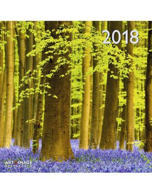 Libraria online eBookshop - Calendar Forest 2018 -  - TeNeues